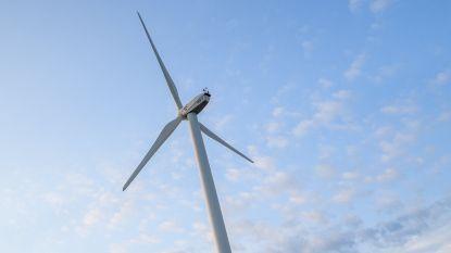"""Gemeente geeft negatief advies voor windturbines: """"Engie heeft huiswerk niet goed gemaakt"""""""