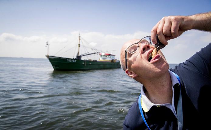 Nieuwe oogst van de Zeeuwse mossel opgevist op de Oosterschelde.