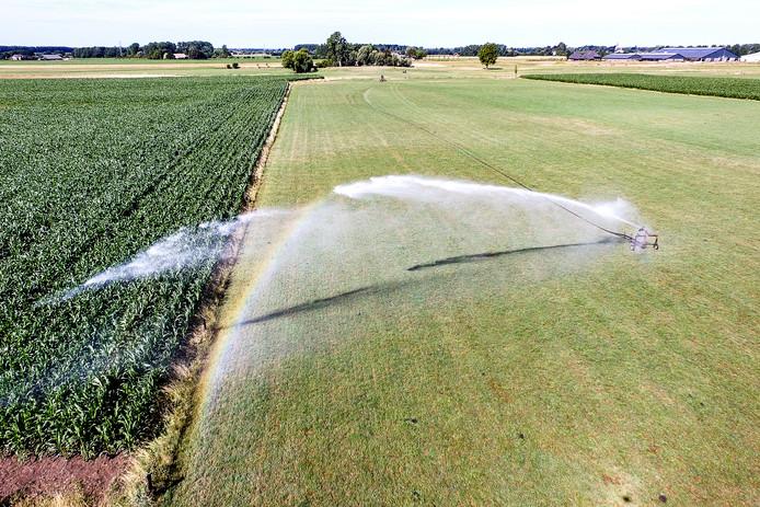 Het is extreem droog in Nederland, vooral in het oosten. Overal in de regio staan sproeiers aan om de gewassen, zoals mais, niet te veel te laten verdorren. Zoals hier bij Voorst.