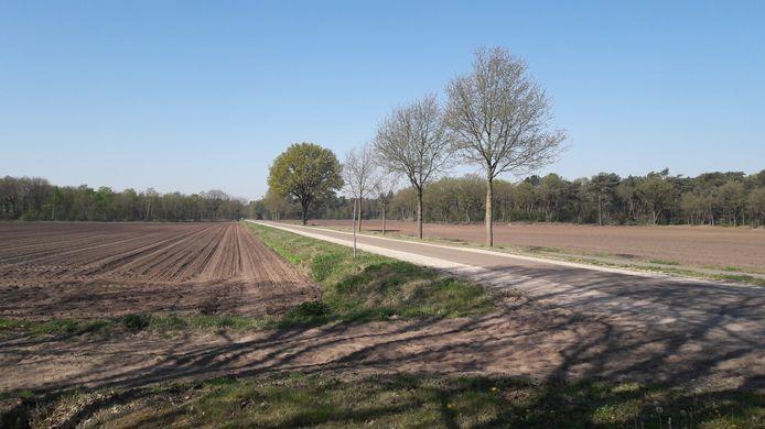 De Molenstraat in het buitengebied van Riethoven.