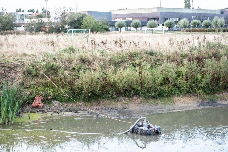 De pomp waarmee de voetbalclub water uit de vijver haalt, zal hoger worden geplaatst, kondigt de burgemeester aan.