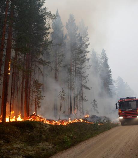 Zweden geteisterd door 'grootste bosbranden in moderne historie'