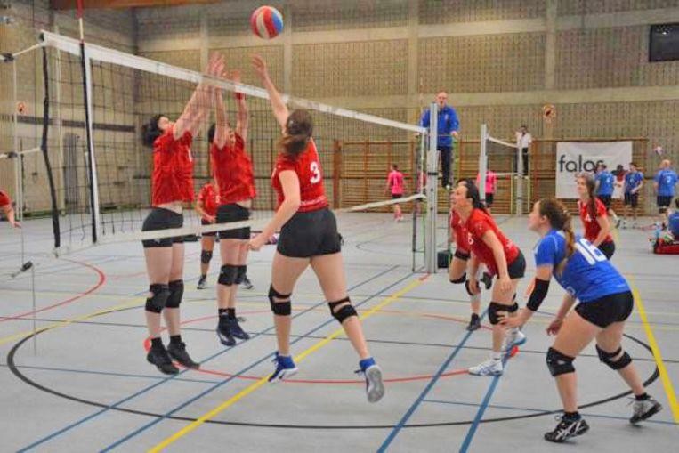 Volleybal in de sportzaal