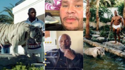 """""""Je kan je niet inbeelden wat zo'n tijger doet met menselijk vlees"""": Mike Tyson beweert dat zijn huisdier hand van vrouw verscheurde toen die over hek sprong"""