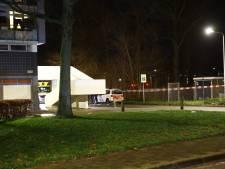 Flatbewoner hoort schreeuwende man na steekpartij in Zwolle: 'Help, help, help'