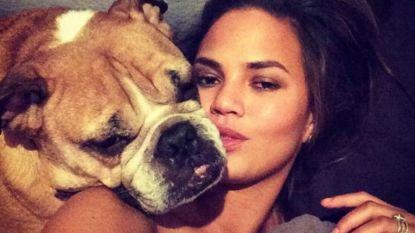 Chrissy Teigen verdrietig om verlies hondje