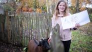 """""""Zo erg voor die dieren!"""": Winter (11) maakt kalenders en koekjes ten voordele van Dierenbescherming"""