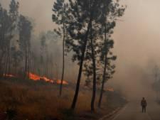 Portugal: les incendies ont repris
