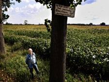 Tijdelijke Amerikaanse begraafplaats in Son: Menselijk botje tussen de aardappels