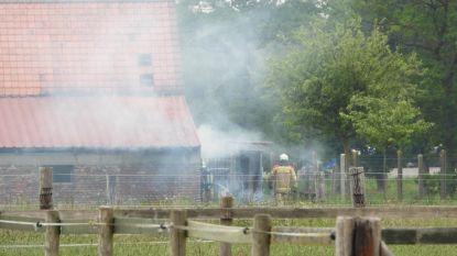 Brand door verbranden groenafval: schade aan hoeve blijft beperkt