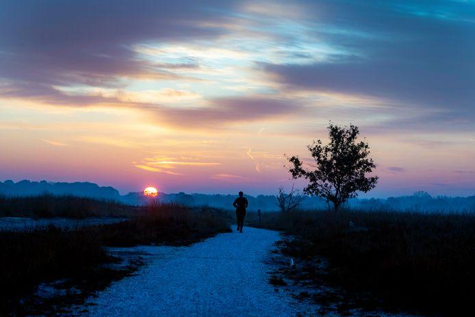 In de vroege ochtend is het op de Regte Heide nog wel rustig.