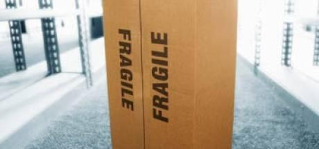 Verdachte verstopt zich in kartonnen doos bij ontdekking hennepstekkerij in Steenbergen