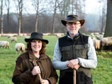 Elly en Harrie zorgen met liefde voor Warnsveldse schapen: 'Sommige mensen kopen een camper, wij een kudde'