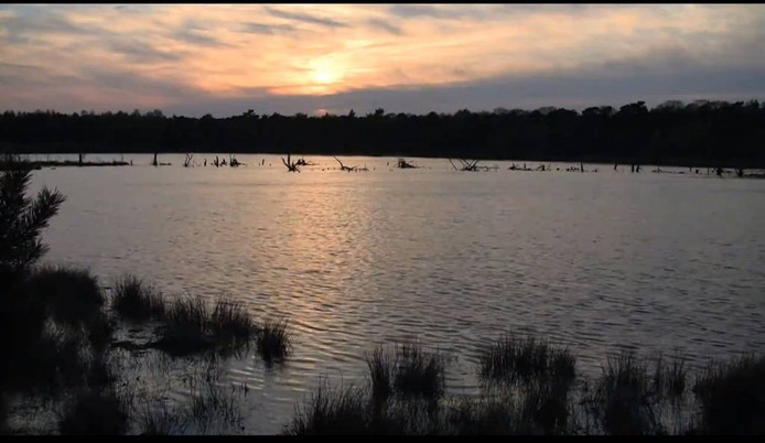 De Hazeputten in Nijnsel, een beeld uit het filmpje over het gebied op de site www.prachtplekken.nl
