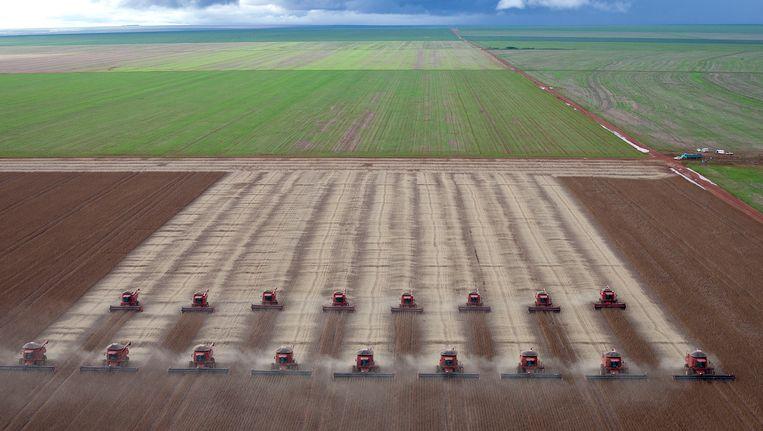 Uitgestrekte sojaplantages in Brazilië, de tweede grootste sojaproducent ter wereld.