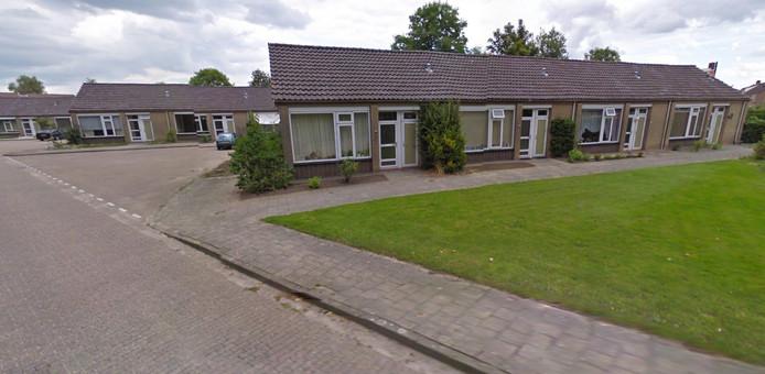 Elzenstraat, Vogelwaarde.