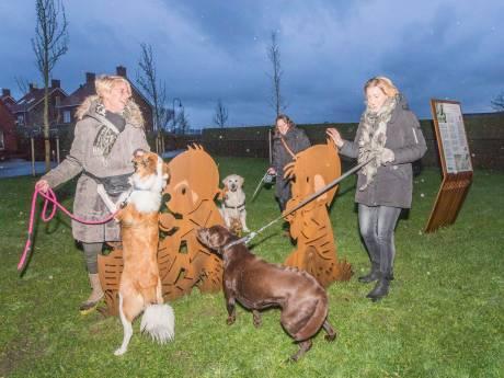 Kapels initiatief voor hondenspeelplaats; 'We betalen ook nog steeds hondenbelasting'