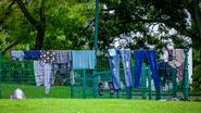 Dertigtal arrestaties bij schoonmaakoperatie in Maximiliaanpark, politie wil gemoederen bedaren