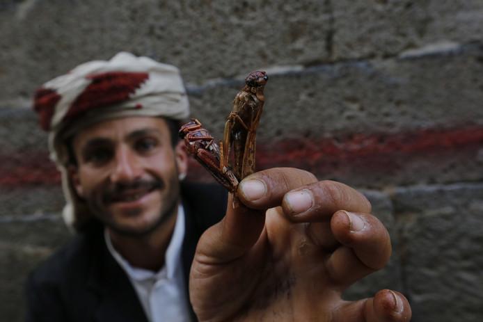 Een verkoper van geroosterde sprinkhanen op een markt in Sanaa.