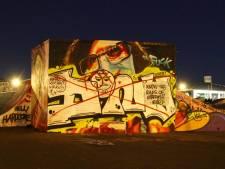 Graffitikunstenaar boos: kunstwerk op skatebaan Vathorst overspoten