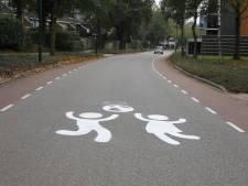 Straatgraffiti in Cuijk zorgt voor verbaasde blikken en afremmende auto's