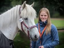 Asdis uit IJsland moet haar paard achterlaten vanwege strenge invoerregels