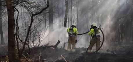 Drie jongens aangehouden voor bosbrand in Boxmeer