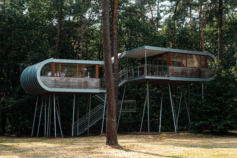 Het Treehouse in Eksel krijgt weldra het gezelschap van een aantal bedden tussen de bomen