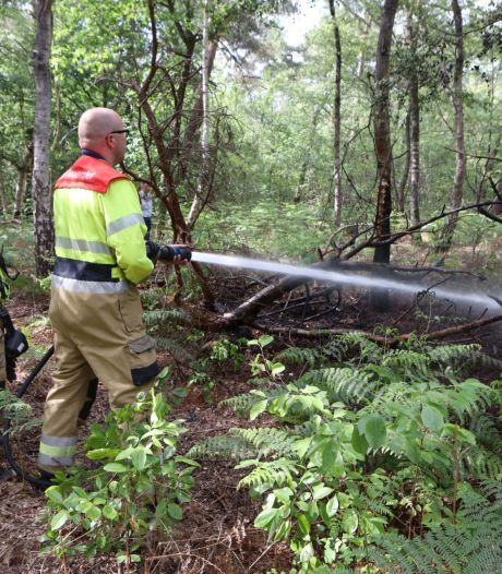 Brandje diep in de bossen bij Rosmalen snel geblust
