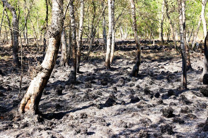 Schade van brand in de Deurnsche Peel die nog na smeult.