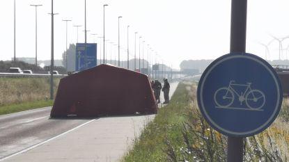 Fietser met speedbike om het leven gekomen bij aanrijding door vrachtwagen op parallelweg van E34