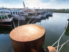 Witte vloot overwintert steeds vaker aan Arnhemse kades