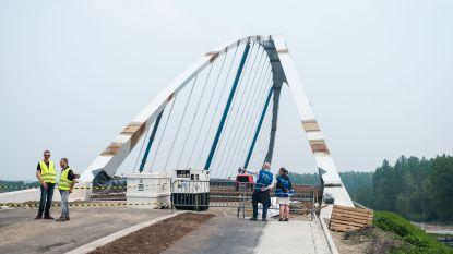 Stokrooienaren nemen kijkje naar nieuwe brug