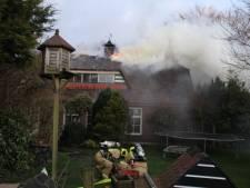 Grote brand op rieten dak, brandweer redt twee honden