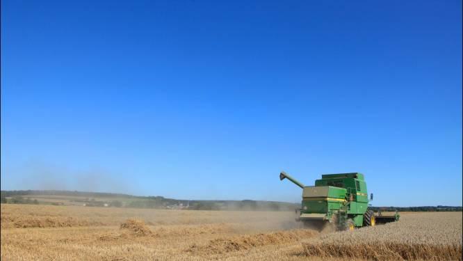 Acht hectare landbouwgrond verkocht