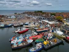 Europees visserijvoorstel in onderhandelingen met Britten is 'desastreus' en 'onacceptabel'