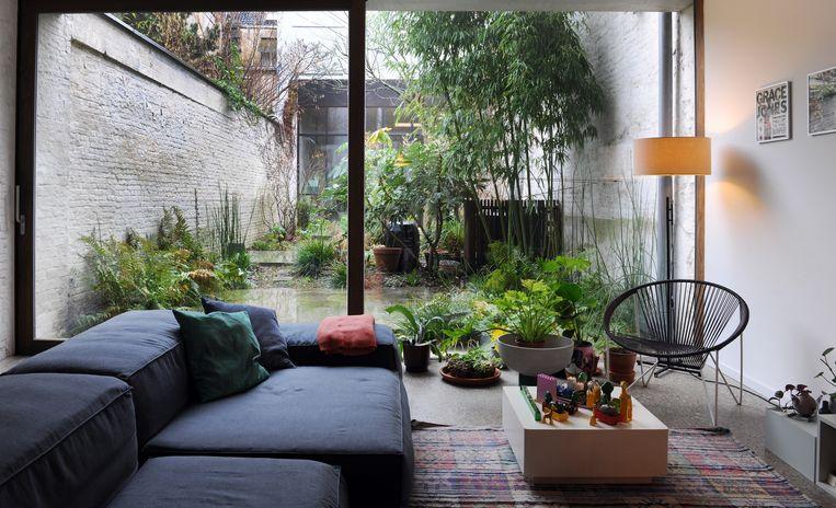 Er is een flink deel van het dak weggenomen om een tuin te kunnen aanleggen. De weelderige planten roepen zelfs in de winter een junglegevoel op.