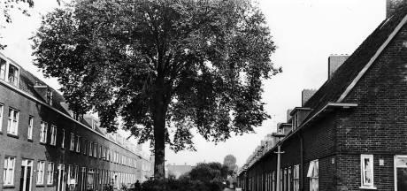 De Jagerslaan; met een bloempotkapsel speelde de jeugd op de grasvelden