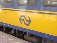 Gemeente Culemborg: Eerst veiligheid, dan meer treinen
