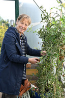 Ans van Schijndel uit Raamsdonksveer eet bijna heel het jaar groenten uit haar eigen moestuin.