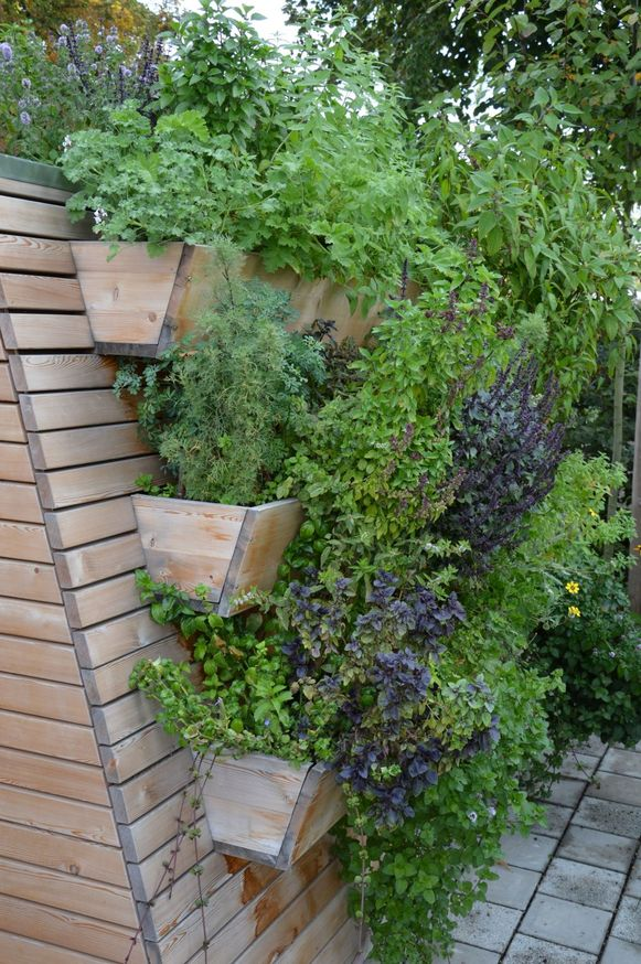 Heb je niet veel plaats, dan kun je verticaal tuinieren, met een plantenwand tegen de muur