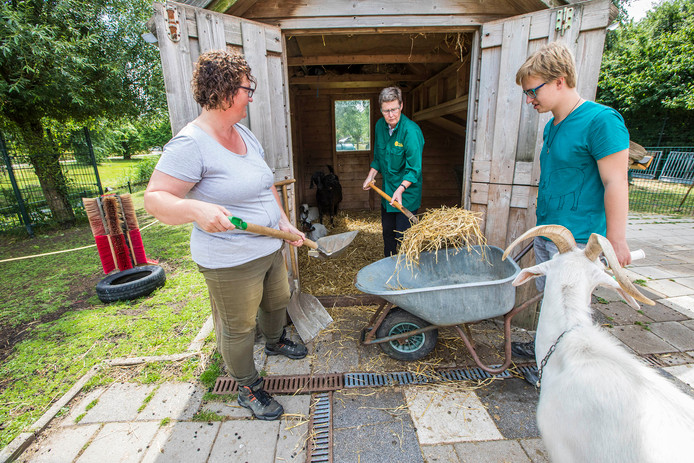 Evelien van Paassen (links) van kinderboerderij SKIP met andere vrijwilligers in het lege ponyhok.