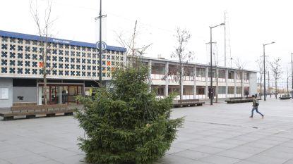 Kerstboom valt kleiner uit dan gepland