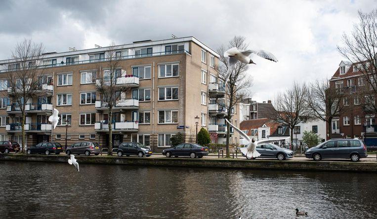 2019. Beeld Maarten Steenvoort