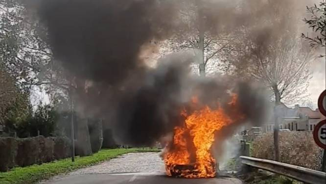"""Autoliefhebber en rallyrijder (71) ziet zijn zeldzame Lotus uit 1967 uitbranden: """"Mijn zoon en ik konden tijdig ontsnappen, maar tienduizenden euro is in vlammen opgegaan"""""""