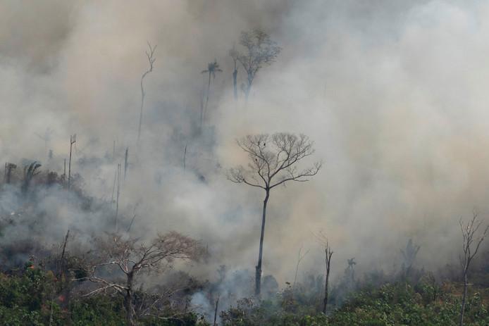 Een bosbrand in de buurt van Porto Velho.