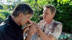 """Alloo in de moestuin van Bart Kaëll: """"Het geheim van mijn tomaten... aspirine"""""""