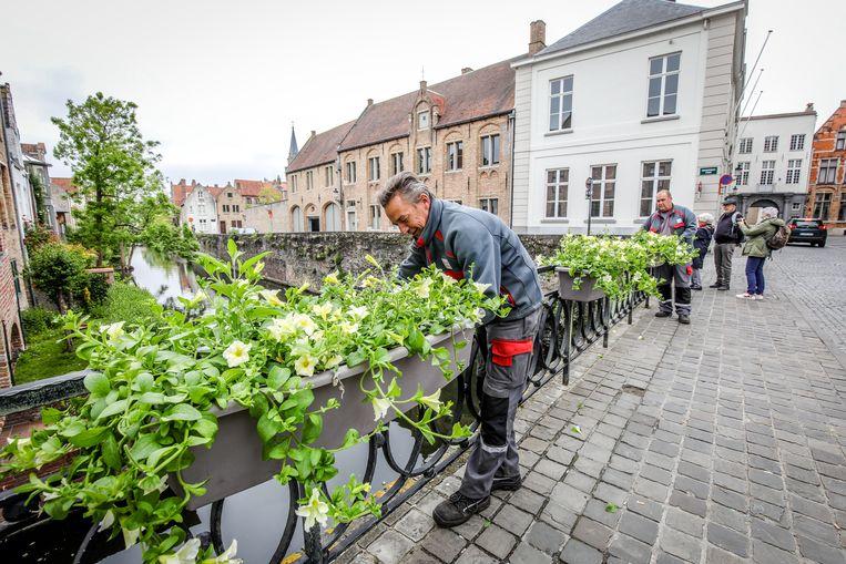 Brugge stadsdiensten hangen bloemen aan de bruggen
