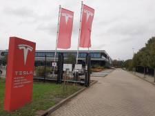 Tilburg in de rats over paradepaardje Tesla: 'We moeten ons stinkende best doen om ze hier te houden'