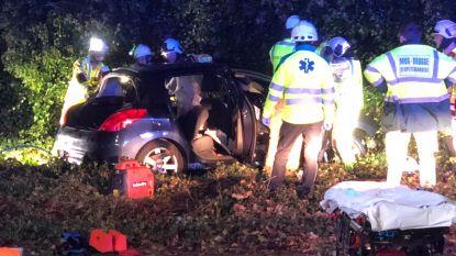 Auto crasht in struikgewas: bestuurder bevrijd door brandweer